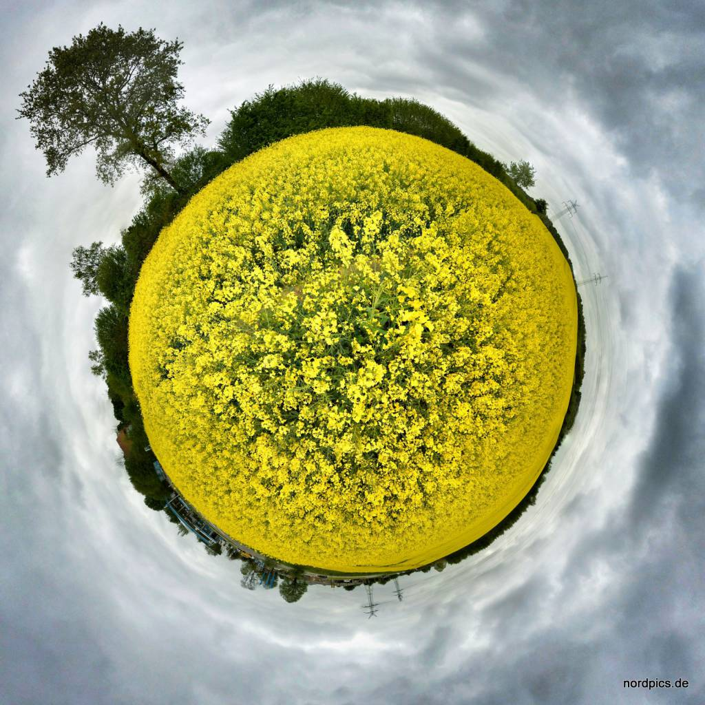 Tiny Planet Molfsee04